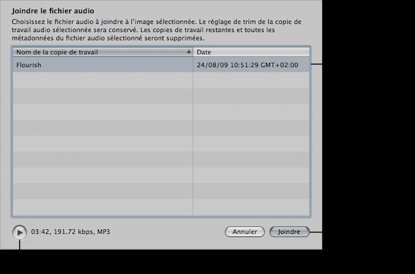 Figure. Commandes dans la zone de dialogue «Joindre le fichier audio».