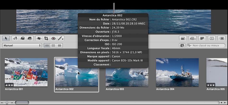 Figure. Bulle d'informations sur les métadonnées pour une image sélectionnée dans le navigateur.