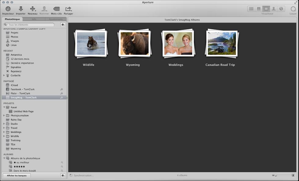Figure. Albums Flickr et Facebook dans l'inspecteur de photothèque.