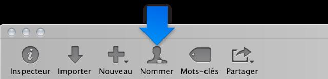 Figure. Bouton Nom dans la barre d'outils.