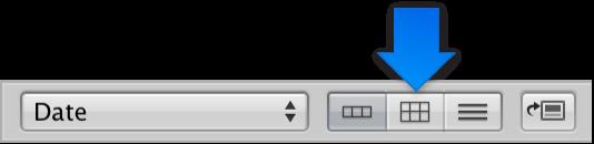 Figure. Bouton Présentation en grille du navigateur.