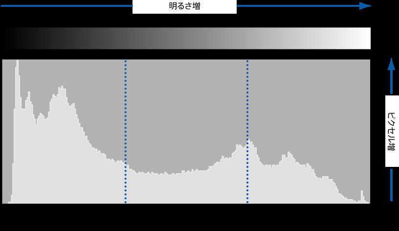 図。 ピクセルの色調上の位置に従ってピクセルの明るさを示すヒストグラムが表示されている図。