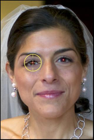 図。 「赤目」ターゲットオーバーレイが被写体の赤目の上に置かれているイメージ。