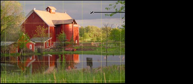 図。 イメージの上に、水平線に正確に合わせるための黄色のグリッドオーバーレイが表示されているイメージ。