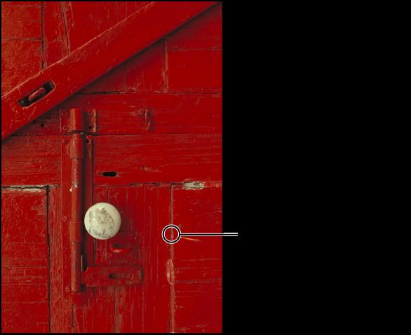 図。 「修復」ブラシの位置を示す円形のオーバーレイが表示されているイメージ。