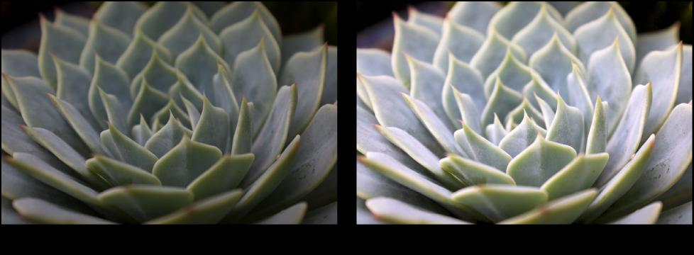図。 「グレイポイント」を使った「カーブ」調整の前と後のイメージ。
