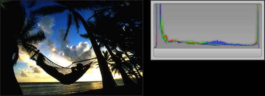図。 シルエットで撮影したイメージとそのヒストグラムを並べて比較したもの。ピークがグラフの左側と右側の両方に集まっており、中央にアクティビティはありません。
