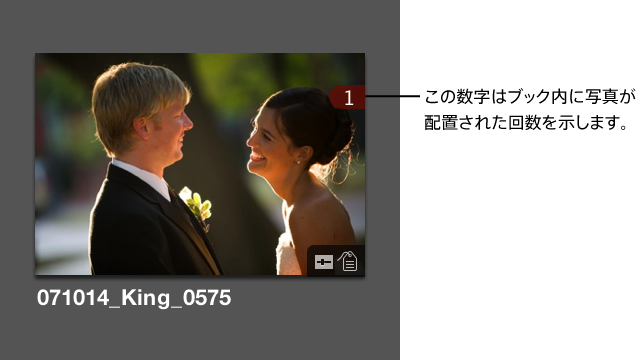 図。 イメージがブックで何回使用されているかを示す数字が右上隅に表示されているブラウザサムネール。