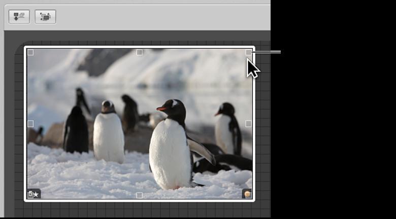 図。 ドラッグしてイメージのサイズを変更できるサイズ変更ハンドルが表示されているライトテーブル。
