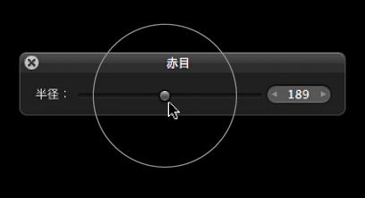 図。 「赤目 HUD」の「半径」スライダの上に表示されている円形のオーバーレイ。「赤目」ターゲットオーバーレイのサイズを示しています。