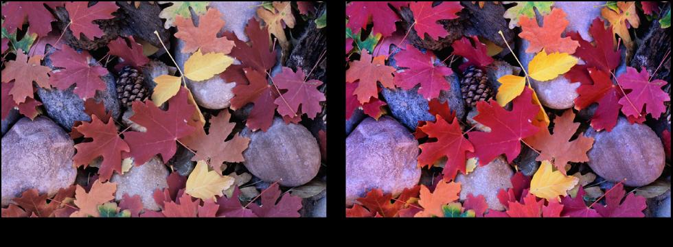 図。 「彩度」調整の前と後のイメージ。