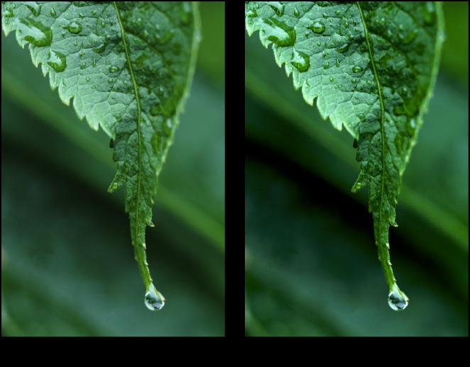 図。 「レベル」調整の前と後のイメージ。
