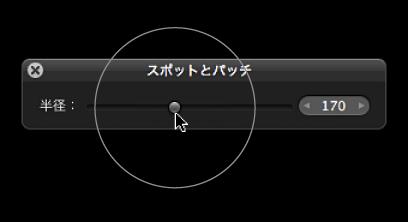 図。 「スポットとパッチ HUD」の「半径」スライダの上に表示されている円形のオーバーレイ。「スポットとパッチ」ターゲットオーバーレイのサイズを示しています。