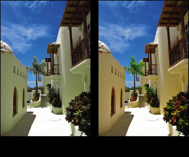 図。 「カラー」調整の前と後のイメージ。