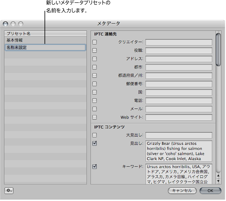 図。 名称未設定の新しいメタデータプリセットが表示されている「メタデータ」ダイアログ。