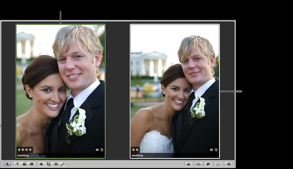 図。 比較イメージが緑の枠線に囲まれて左側に、候補イメージが白い枠線に囲まれて右側に表示されているビューア。