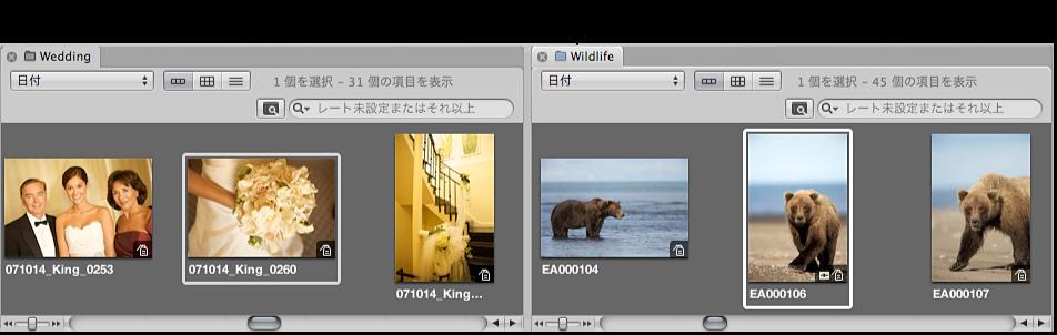 図。 ブラウザがパネルに分割され、「ライブラリ」インスペクタで選択した 2 つの項目のイメージが表示されています。