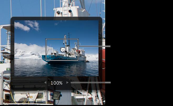 図。 イメージ内のパンに使用する、内部に赤い長方形があるグレイのボックスと、イメージの拡大率の変更に使用する値スライダが表示されているイメージの詳細。