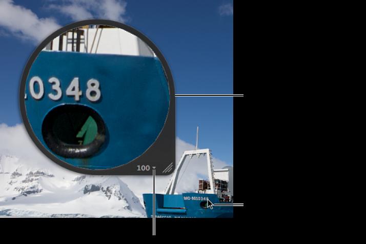 図。 ビューアのイメージ内でポインタのある部分を拡大表示しているセンタールーペ。