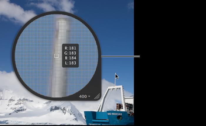 図。 ピクセルグリッドとカラー値を表示するように設定されたセンタールーペ。