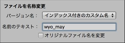 図。 「読み込み」ブラウザの「ファイルを名称変更」コントロール。