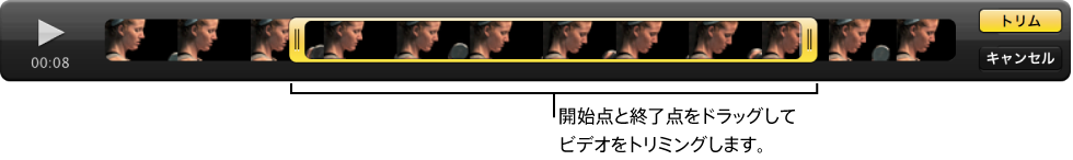 図。 ビューアのビデオクリップの開始点と終了点。