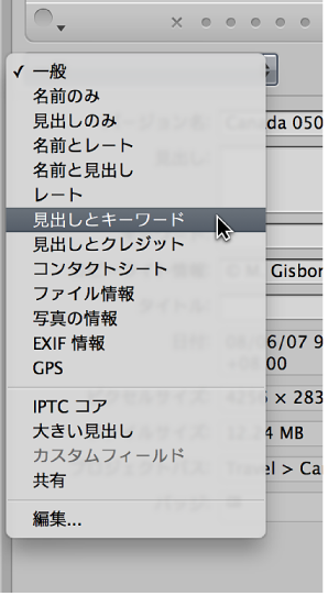 図。 「情報」インスペクタの「メタデータ表示」ポップアップメニューにあるオプション。