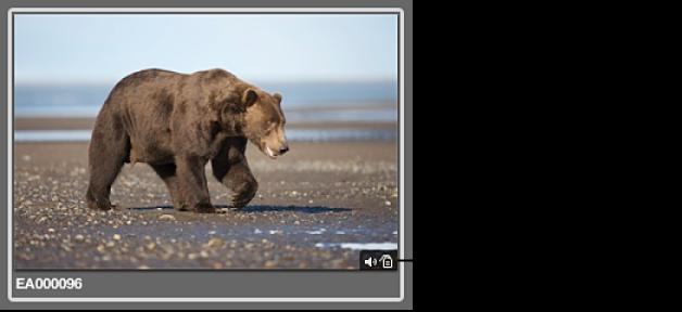 図。 イメージにオーディオ添付ファイルがあることを示すバッジが表示されているイメージ。