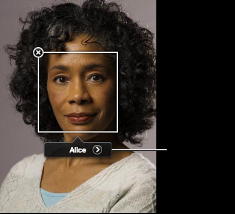 図。 顔ラベルの「人物を表示」ボタン。