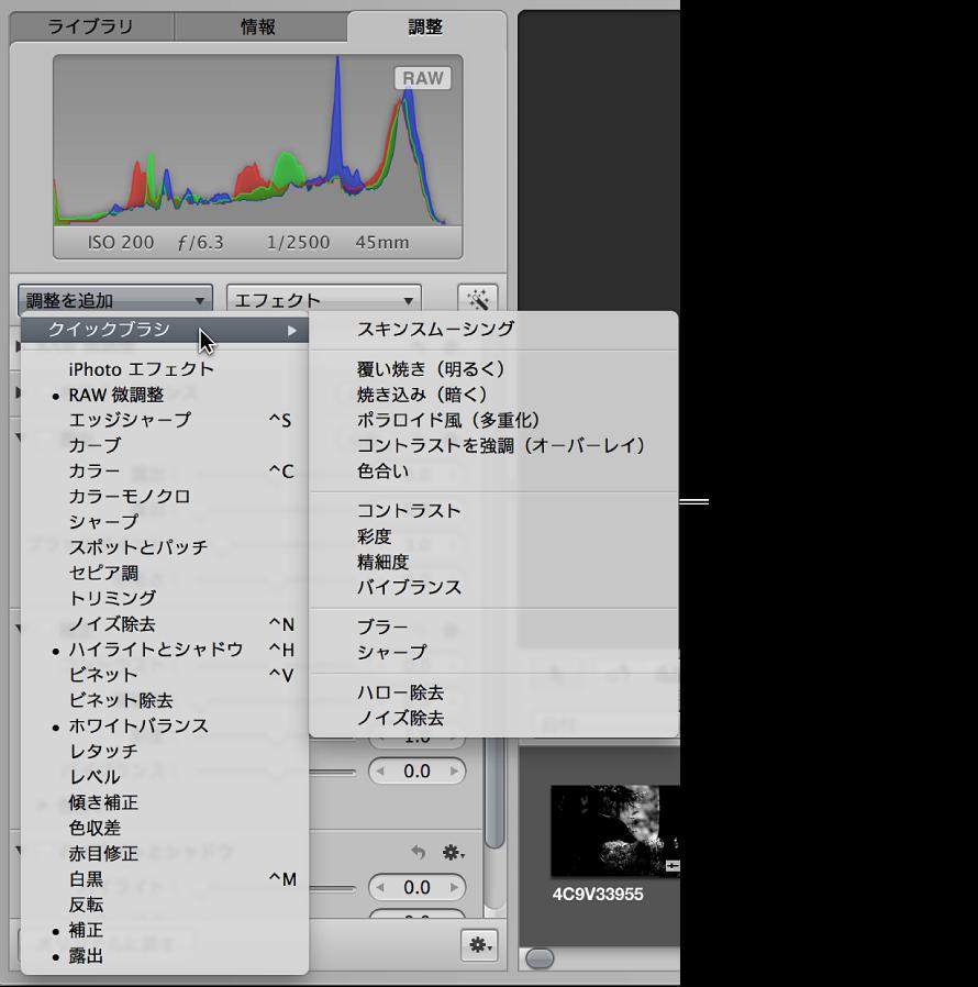 図。 「調整を追加」ポップアップメニューの「クイックブラシ」サブメニューで使用できるクイックブラシ調整が表示されている「調整」インスペクタ。