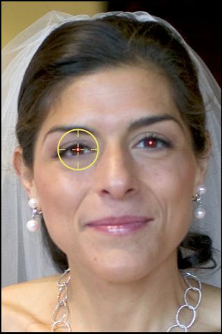 """图。 图示为放在主体红眼上的""""红眼""""目标叠层。"""
