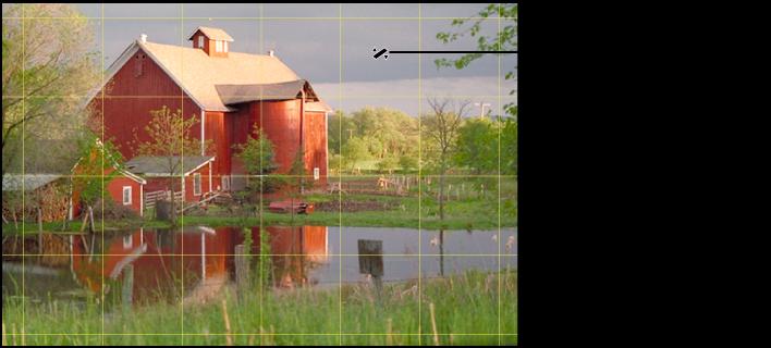 图。 图示为黄色的网格目标叠层,出现在图像上,可帮助确保完全水平。