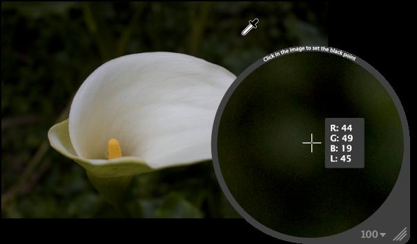 图。 放大镜放大显示图像中的最暗像素。