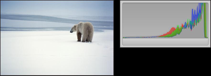 图。 并排比较明亮图像及其直方图,峰值集中在图形右侧。
