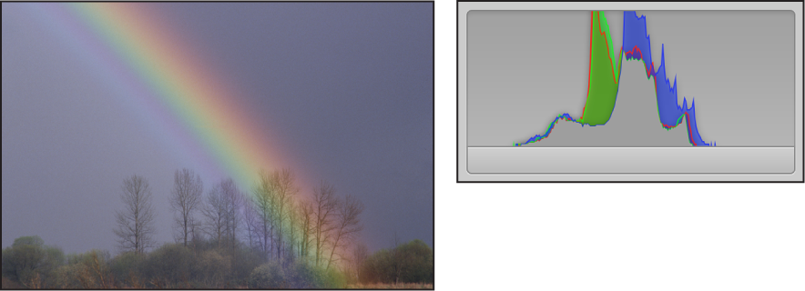 图。 并排比较低对比度图像及其直方图,峰值集中在图形中间,左右两侧不存在任何活动。