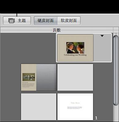 """图。 相册布局编辑器中的""""主题""""按钮。"""