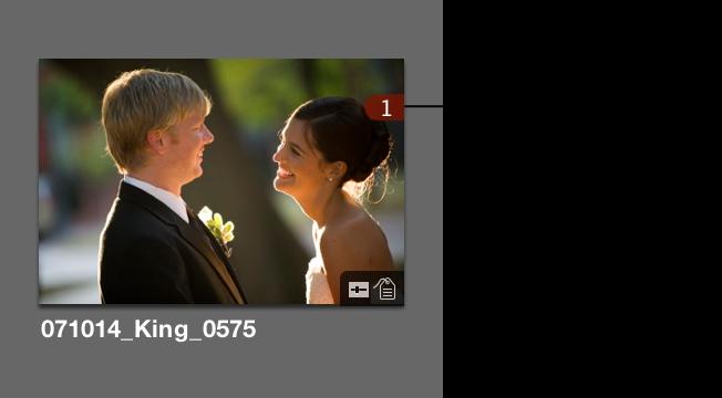 图。 浏览器缩略图,其右上角的数字指示图像在相册中的使用次数。