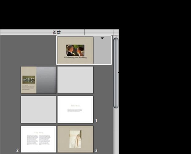 """图。 相册布局编辑器的""""页面""""面板中的控制。"""