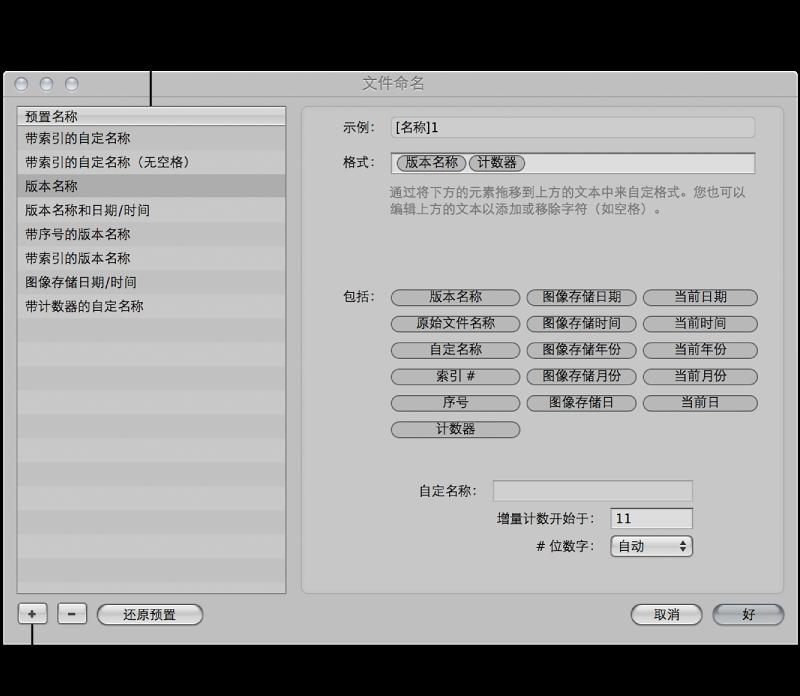 """图。 """"名称格式""""在""""文件命名""""对话框中被选定。"""