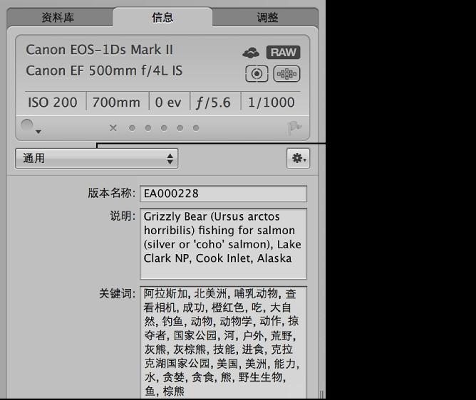 """图。 此""""元数据""""检查器显示""""元数据视图""""弹出式菜单和""""关键词""""栏。"""