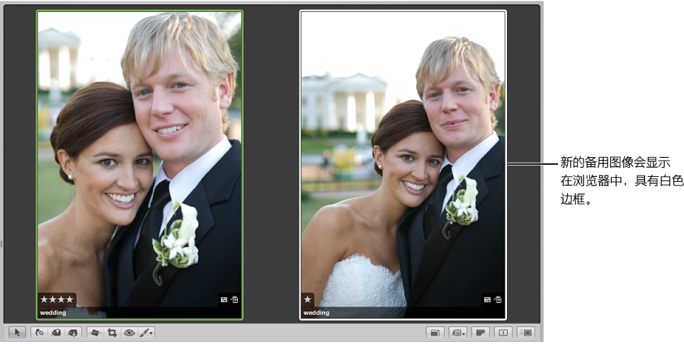 图。 此检视器左侧显示一个比较图像,右侧显示一个新的备选图像。