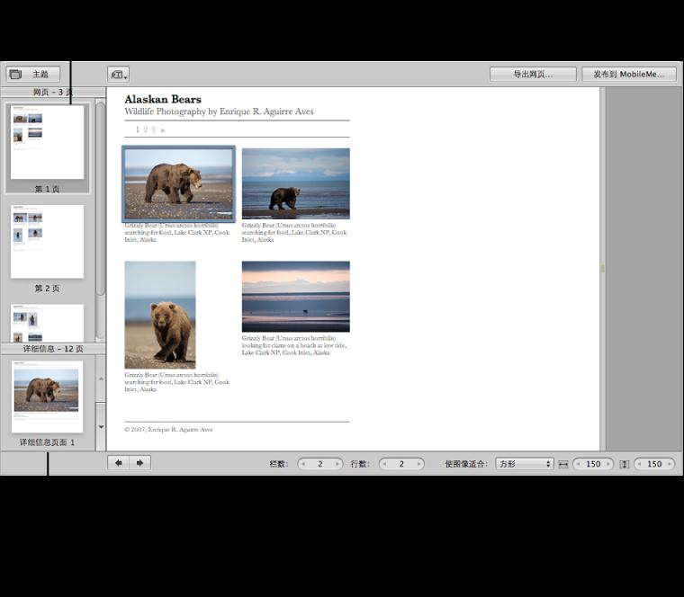 图。 网页编辑器中的网络画廊控制。