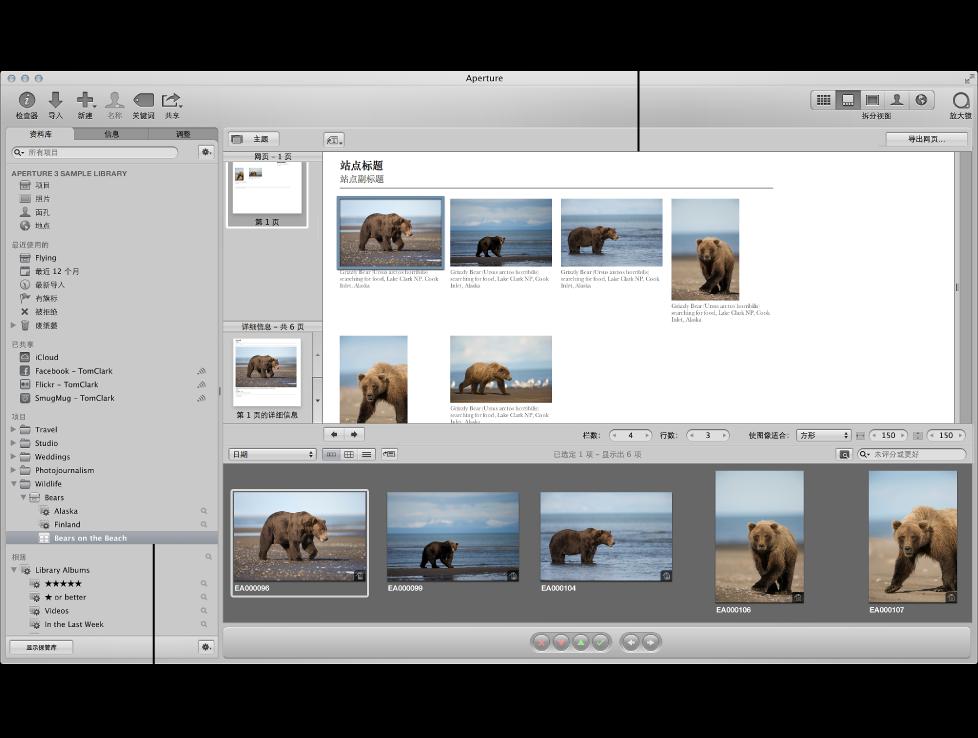 """图。 Aperture 主窗口显示""""资料库""""检查器中选定了一个网页相簿,同时网页编辑器显示相簿的图像。"""