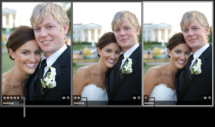 图。 一组显示评价叠层的图像。