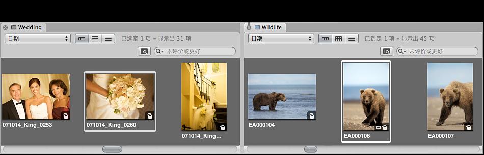 图。 浏览器显示项目标签中的关闭按钮。
