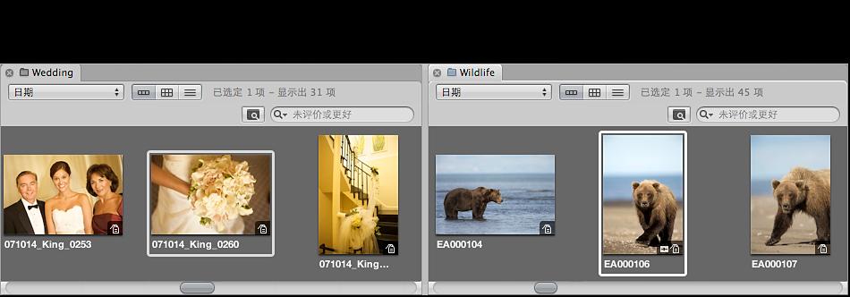 图。 浏览器显示两个项目并排显示在各自的标签面板中。