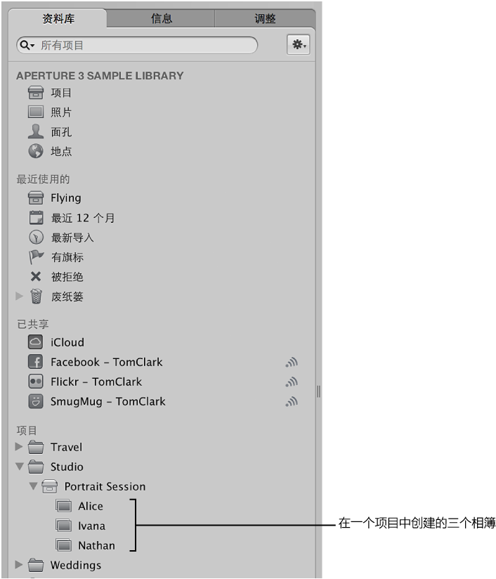 """图。 """"资料库""""检查器显示项目中的相簿。"""