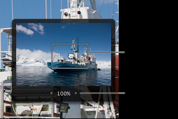 图。 图像详细信息,该图像显示一个灰色框,里面的红色矩形用来在图像中移动,值滑块用来更改图像的放大比例。