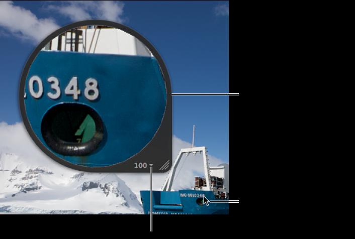 图。 居中放大镜放大了检视器中指针所在位置的图像部分。