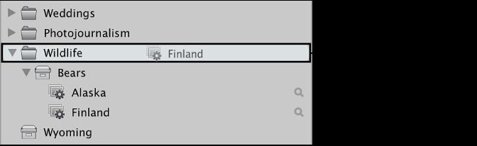 """图。 将相簿拖到""""资料库""""检查器中的文件夹。"""